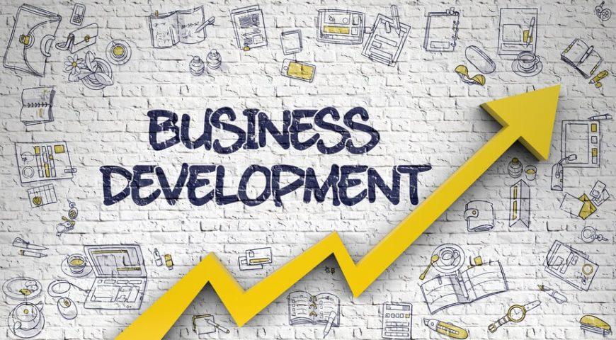 pelatihan Business Development