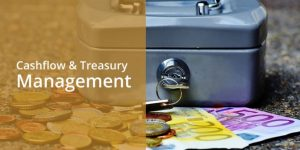 training CASH FLOW AND TREASURY MANAGEMENT
