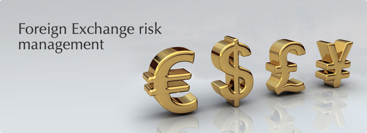 pelatihan Foreign Exchange Risk Management